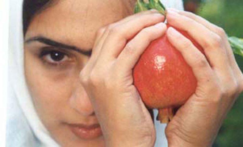 Tehran Has No More Pomegranates